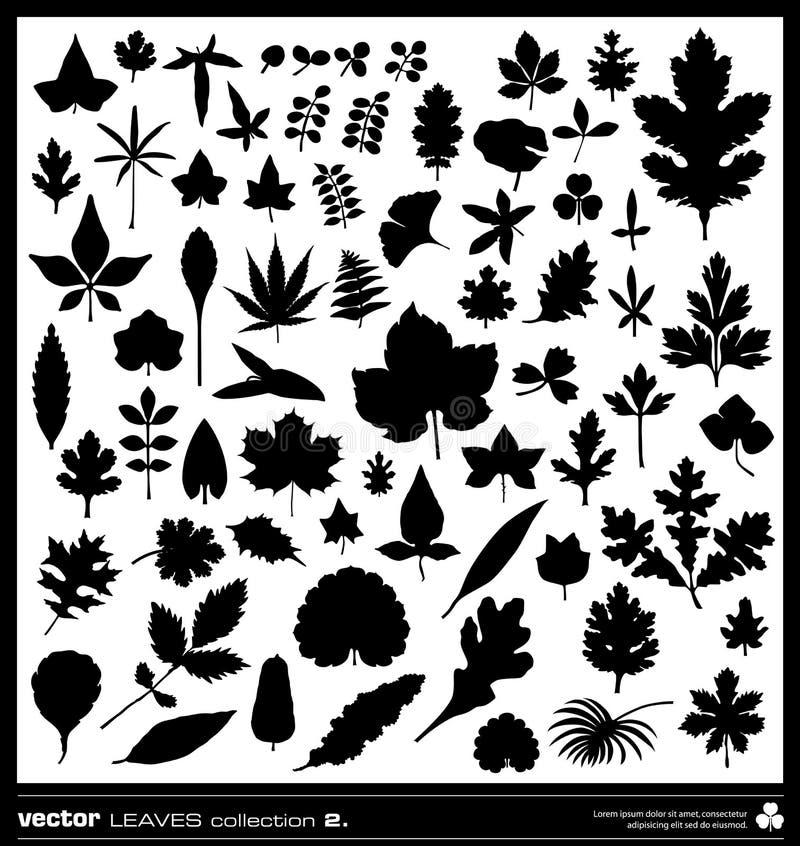 Vector de las siluetas de las hojas ilustración del vector