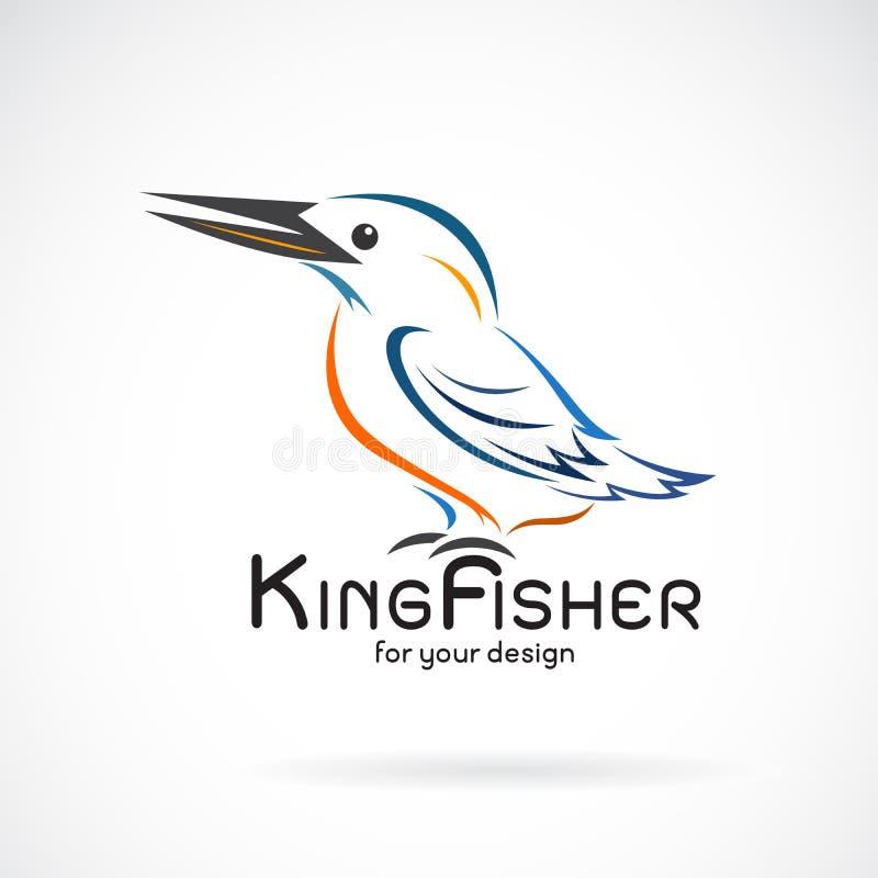 Vector de los atthis del birdAlcedo de los martines pescadores en el fondo blanco Dise?o del p?jaro Martines pescadores logotipo  stock de ilustración