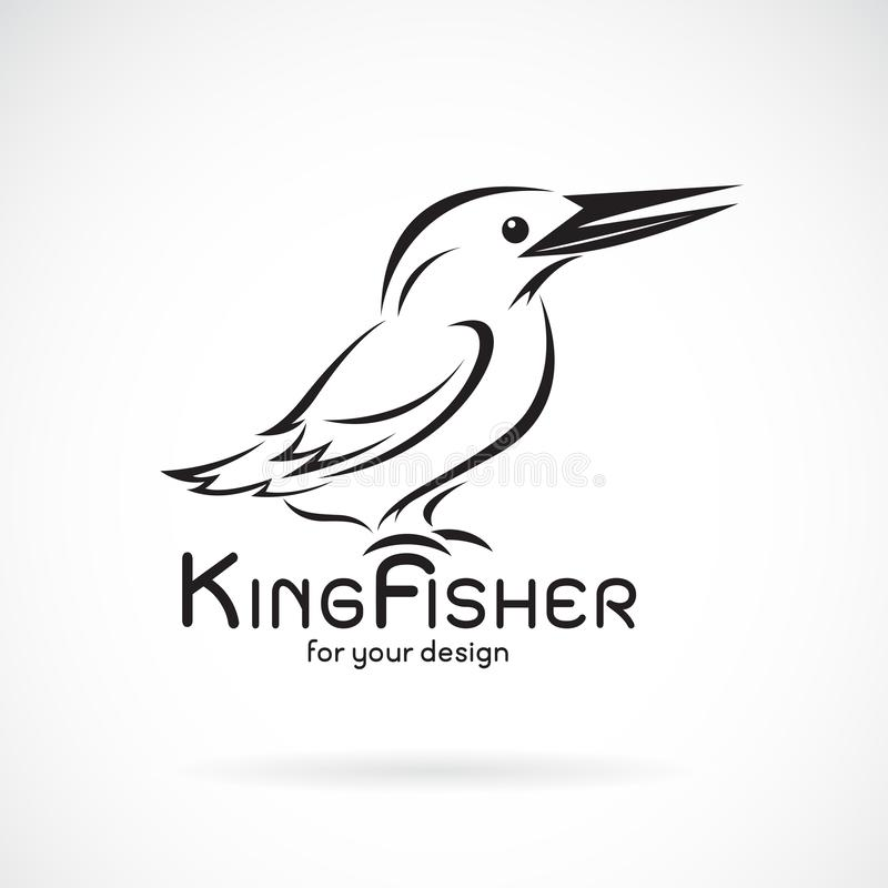 Vector de los atthis del birdAlcedo de los martines pescadores en el fondo blanco Dise?o del p?jaro Martines pescadores logotipo  libre illustration