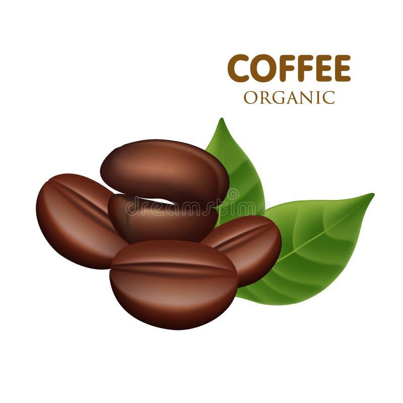 Vector de los granos de café foto de archivo