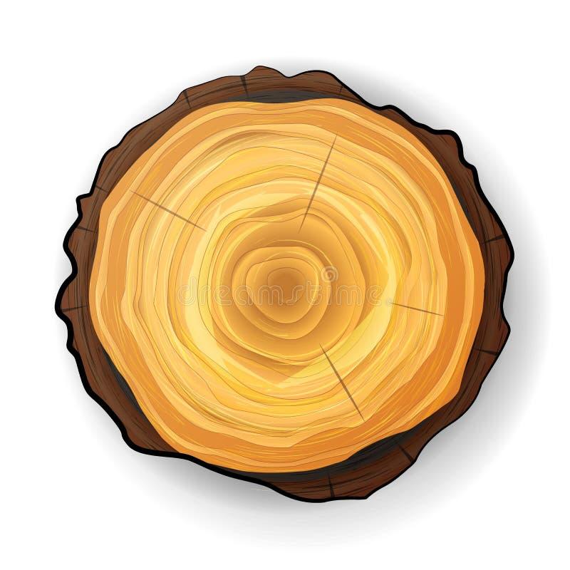 Vector de madera del tocón del árbol seccionado transversalmente Corte redondo del árbol con los anillos anuales stock de ilustración