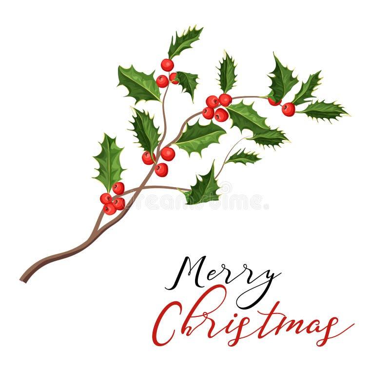 Vector de maretak ilex bladeren van de Kerstmishulst stock illustratie