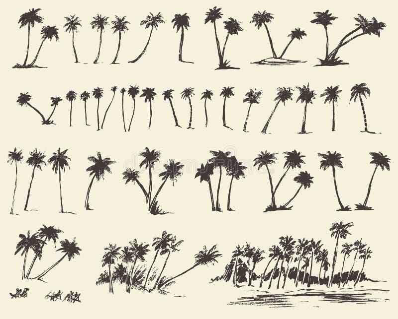 Vector de Palmenschets van het Illustratiessilhouet royalty-vrije illustratie