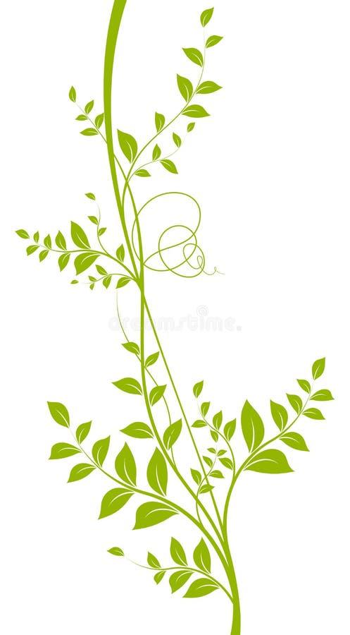 Vector decorative element. Green liana royalty free illustration