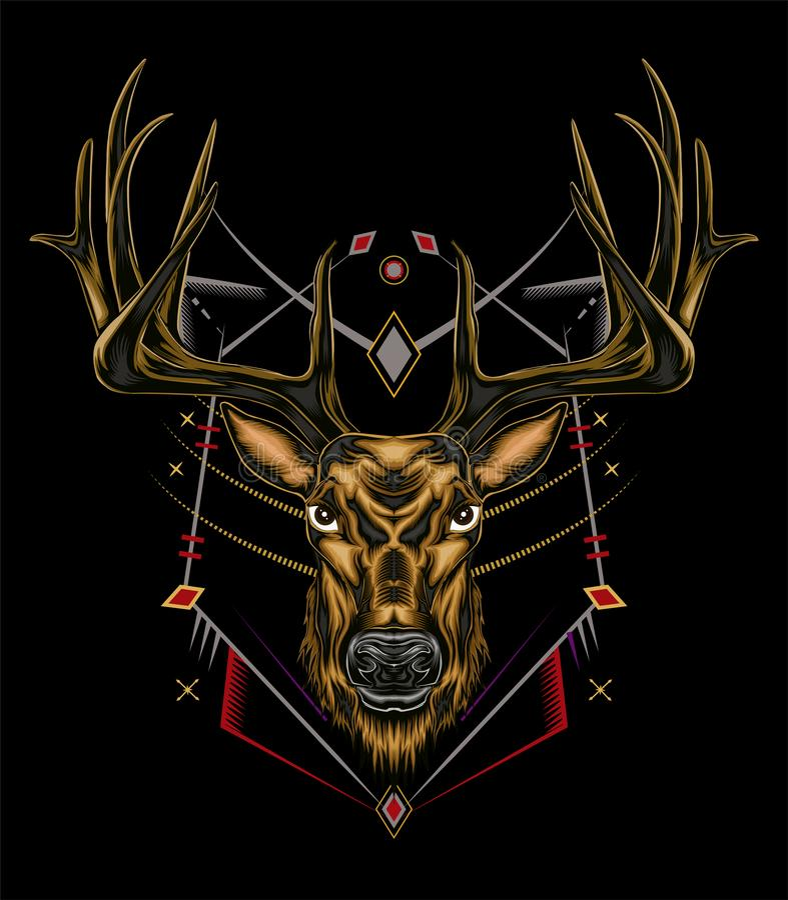 Vector Deer head-illustration av ett allvarligt ansikte royaltyfria bilder
