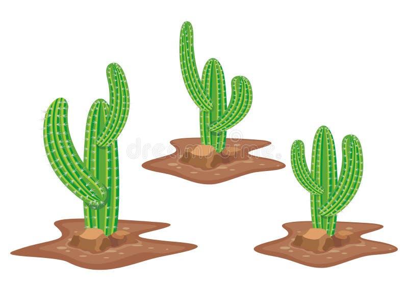 Vector del cactus stock de ilustración