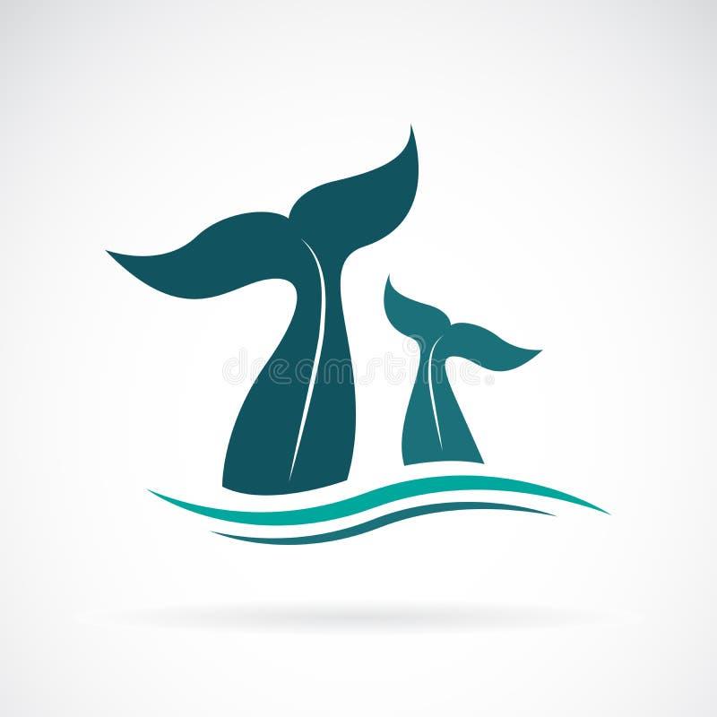 Vector del diseño de la cola de la ballena en el fondo blanco Animales stock de ilustración