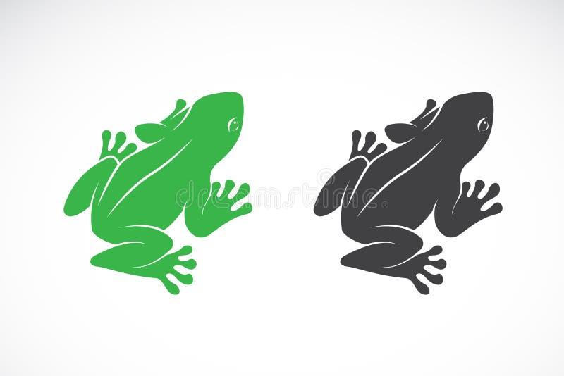 Vector del diseño de las ranas en el fondo blanco anfibio Animal stock de ilustración