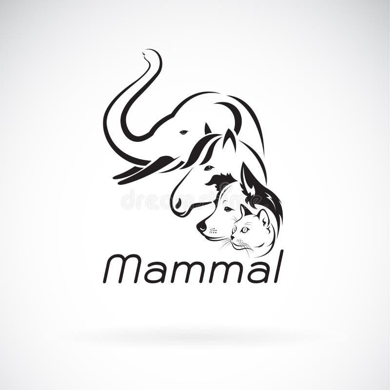 Vector del diseño del grupo del mamífero en el fondo blanco , Elefante, caballo Perro Gato , Animales pet Logotipo o icono del ma ilustración del vector