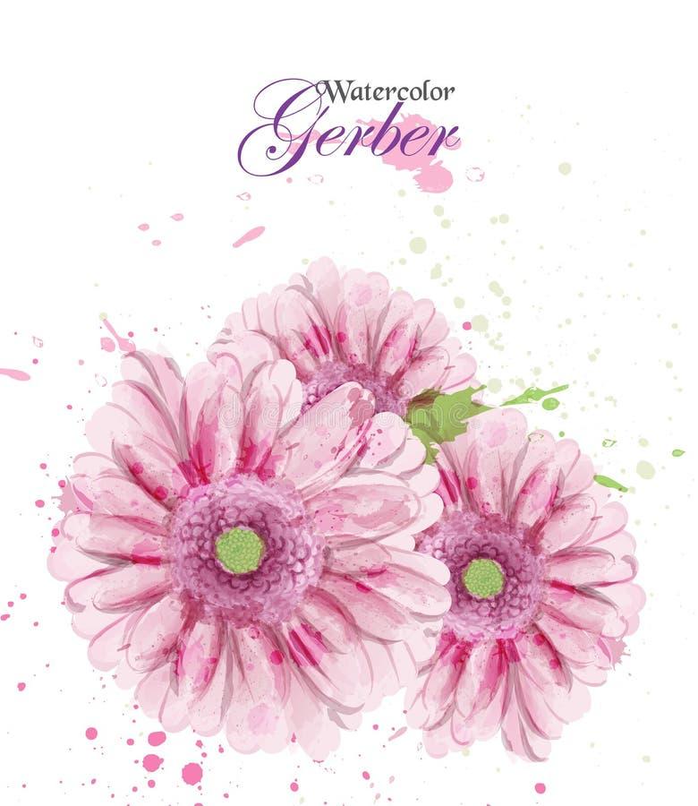 Vector del flor de la flor del gerber de la acuarela Saludo del vintage, o invitación de la boda Ramos florales de la decoración  ilustración del vector