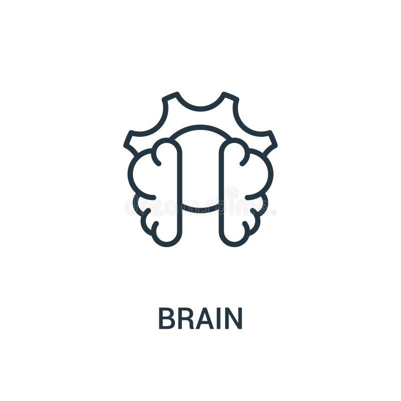 vector del icono del cerebro de la colección del seo Línea fina ejemplo del vector del icono del esquema del cerebro Símbolo line libre illustration