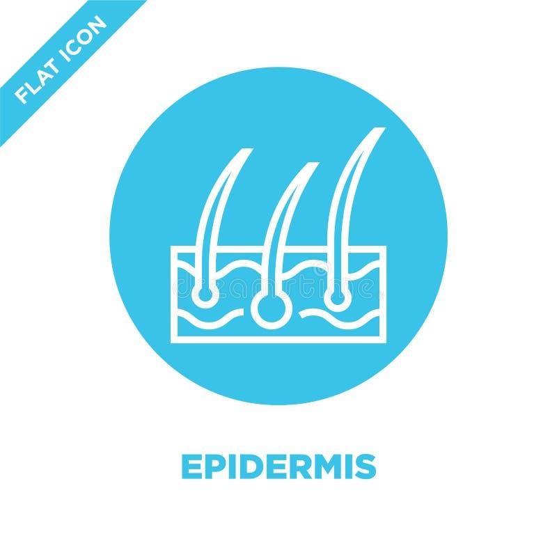 vector del icono de la epidermis de la colección de los órganos humanos Línea fina ejemplo del vector del icono del esquema de la stock de ilustración