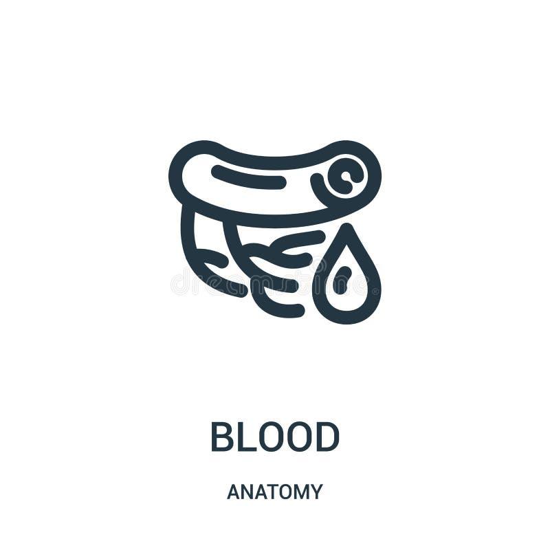 vector del icono de la sangre de la colección de la anatomía Línea fina ejemplo del vector del icono del esquema de la sangre Sím ilustración del vector