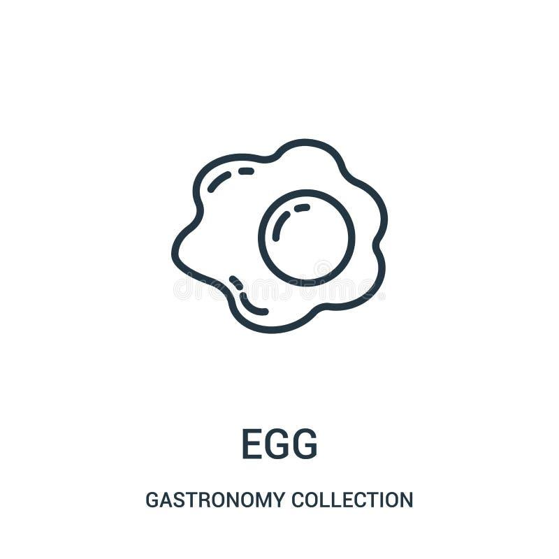 vector del icono del huevo de la colección de la colección de la gastronomía L?nea fina ejemplo del vector del icono del esquema  ilustración del vector