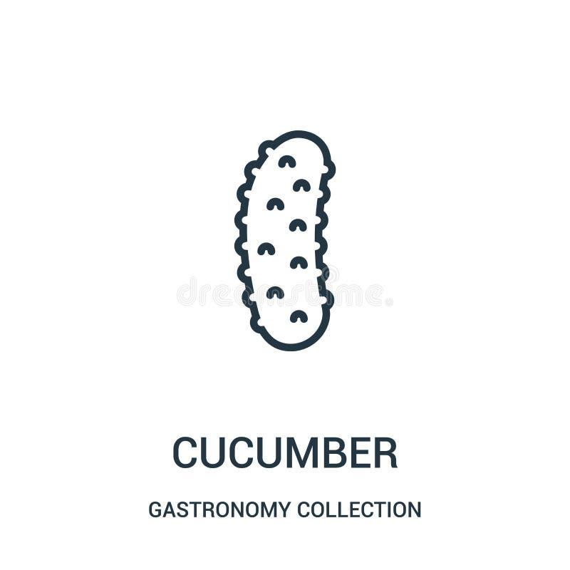 vector del icono del pepino de la colección de la colección de la gastronomía Línea fina ejemplo del vector del icono del esquema ilustración del vector