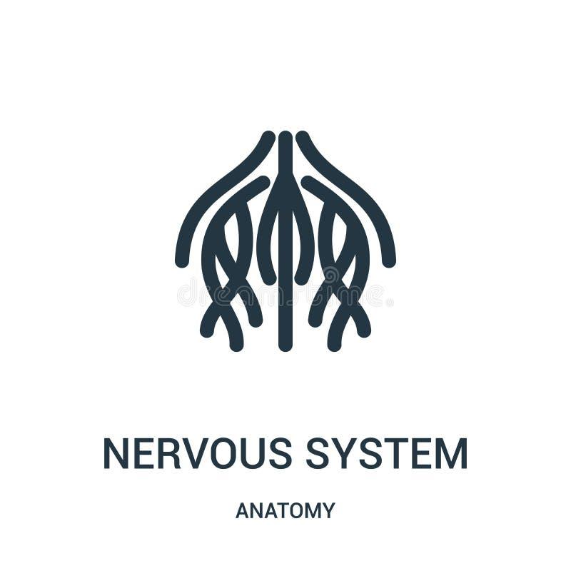vector del icono del sistema nervioso de la colección de la anatomía Línea fina ejemplo del vector del icono del esquema de siste ilustración del vector