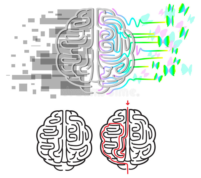 Vector del laberinto de los hemisferios del cerebro stock de ilustración
