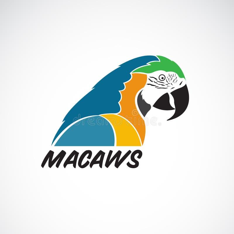 Vector del loro de los macaws en el fondo blanco Icono del pájaro stock de ilustración
