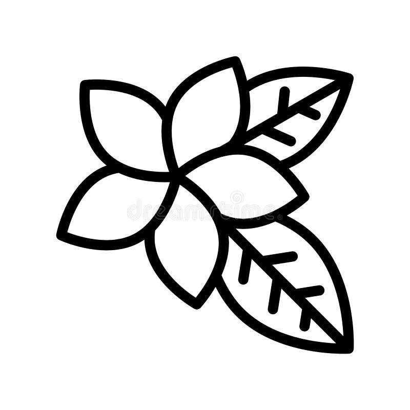 Vector del Plumeria, línea relacionada tropical icono del estilo libre illustration