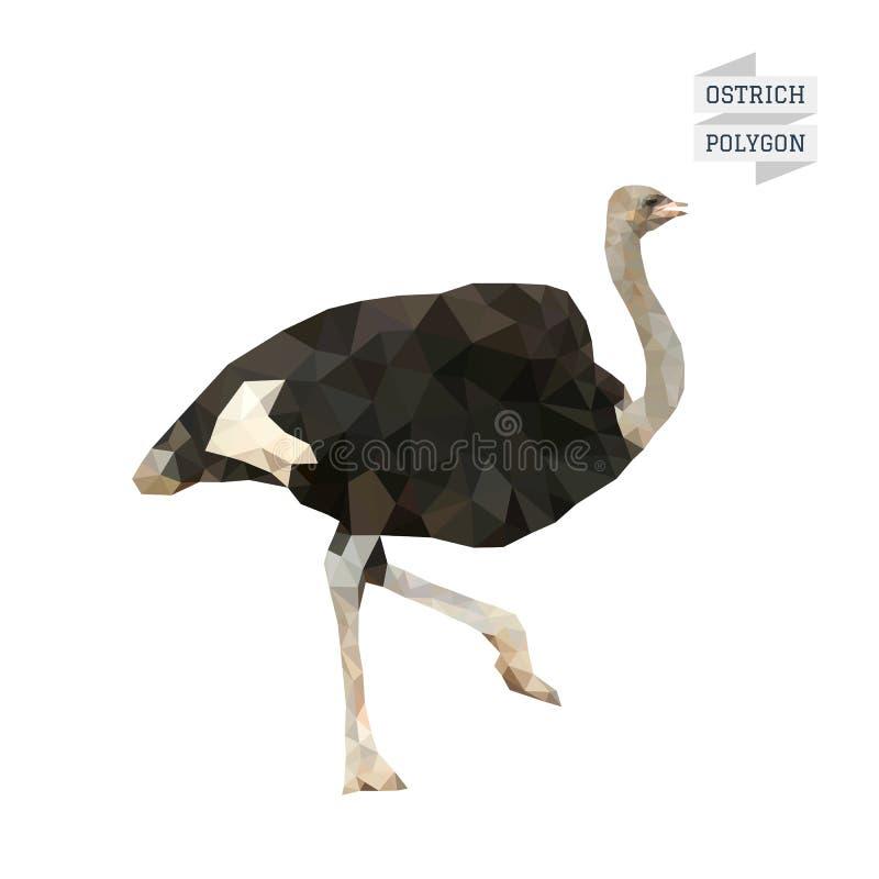 Vector del polígono de la avestruz ilustración del vector