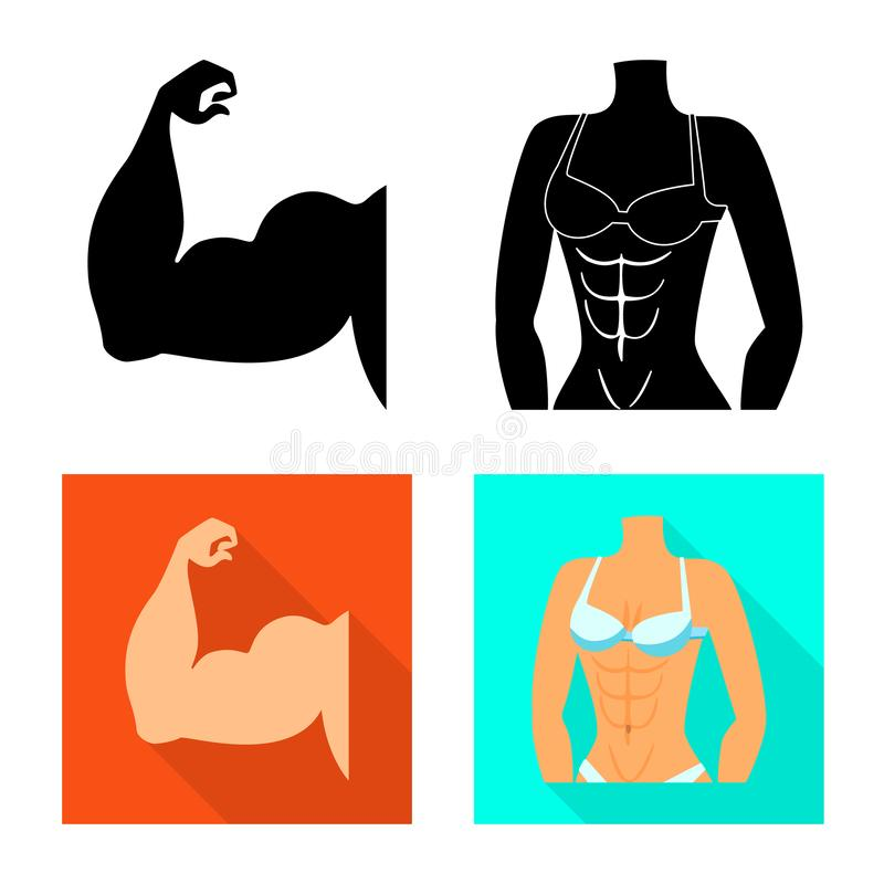 Isolated object of fiber and muscular symbol. Set of fiber and body stock symbol for web. Vector design of fiber and muscular sign. Collection of fiber and body royalty free illustration