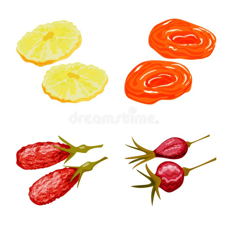 Isolated object of fruit and dried logo. Set of fruit and food vector icon for stock. Vector design of fruit and dried icon. Collection of fruit and food stock vector illustration