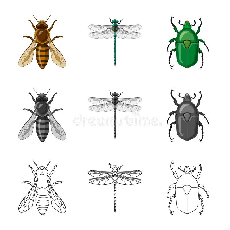 Isolated object of insect and fly logo. Collection of insect and element vector icon for stock. vector illustration