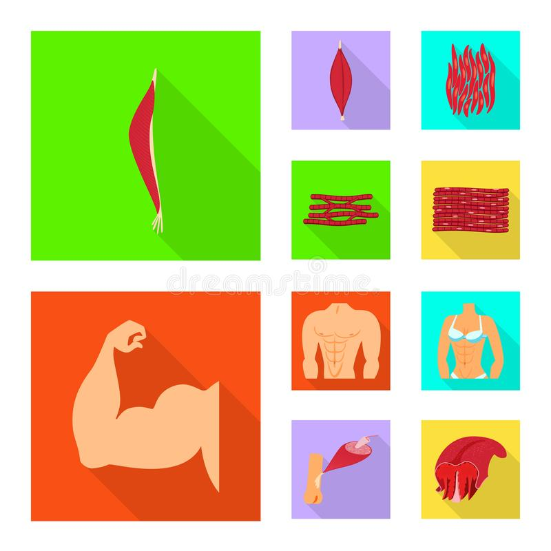Isolated object of muscle and cells sign. Set of muscle and anatomy stock symbol for web. Vector design of muscle and cells logo. Collection of muscle and stock illustration