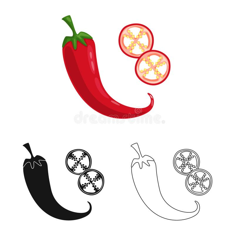 Isolated object of pepper and chili symbol. Collection of pepper and red stock symbol for web. Vector design of pepper and chili sign. Set of pepper and red royalty free illustration