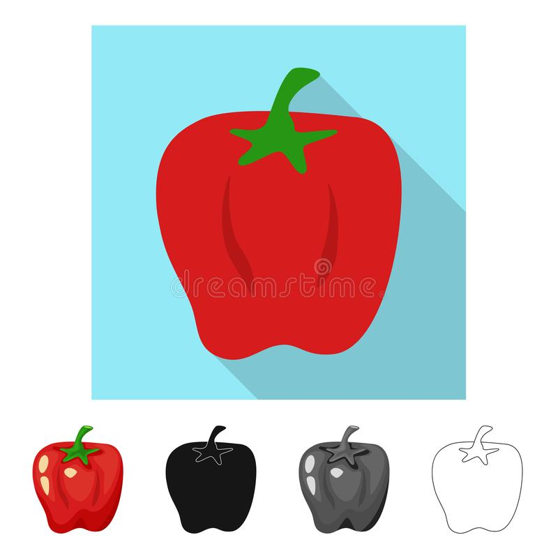 Vector design of pepper and red  icon. Set of pepper and vegetable stock vector illustration. Vector illustration of pepper and red  symbol. Collection of royalty free illustration