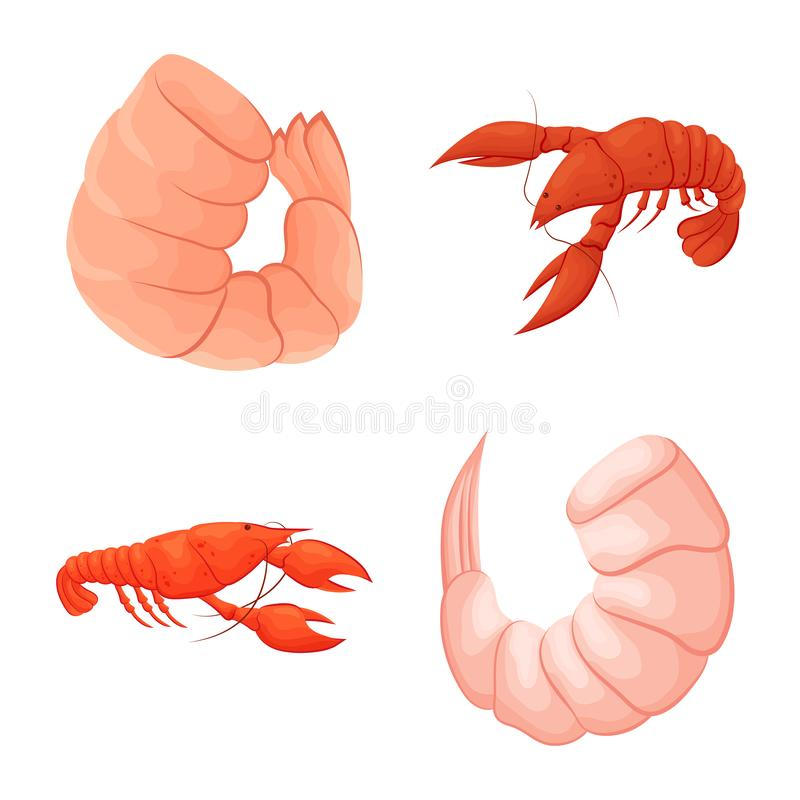 Vector design of shrimp and crab logo. Collection of shrimp and sea vector icon for stock. royalty free illustration