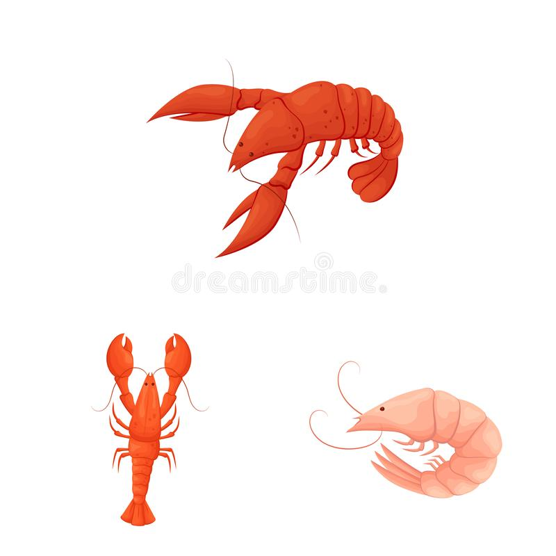 Isolated object of shrimp and crab icon. Collection of shrimp and sea stock vector illustration. royalty free illustration