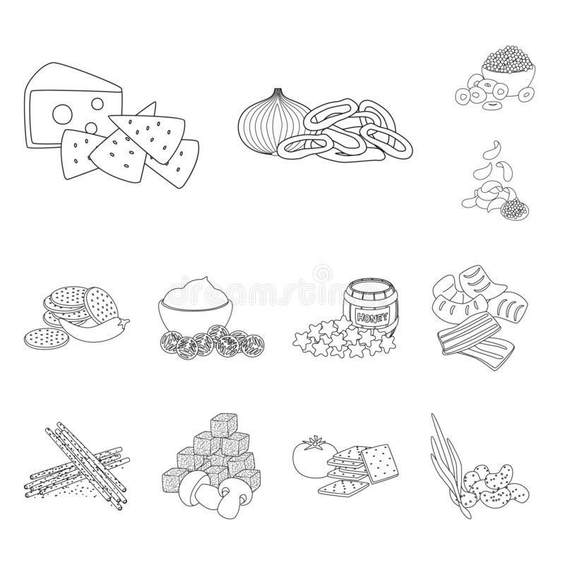 Vector design of taste and crunchy icon. Collection of taste and cooking vector icon for stock. Vector illustration of taste and crunchy symbol. Set of taste stock illustration