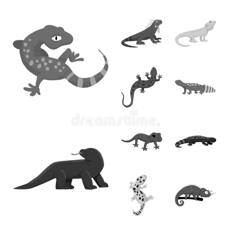Isolated object of wild and exotic sign. Collection of wild and fauna stock symbol for web. Vector design of wild and exotic logo. Set of wild and fauna stock vector illustration