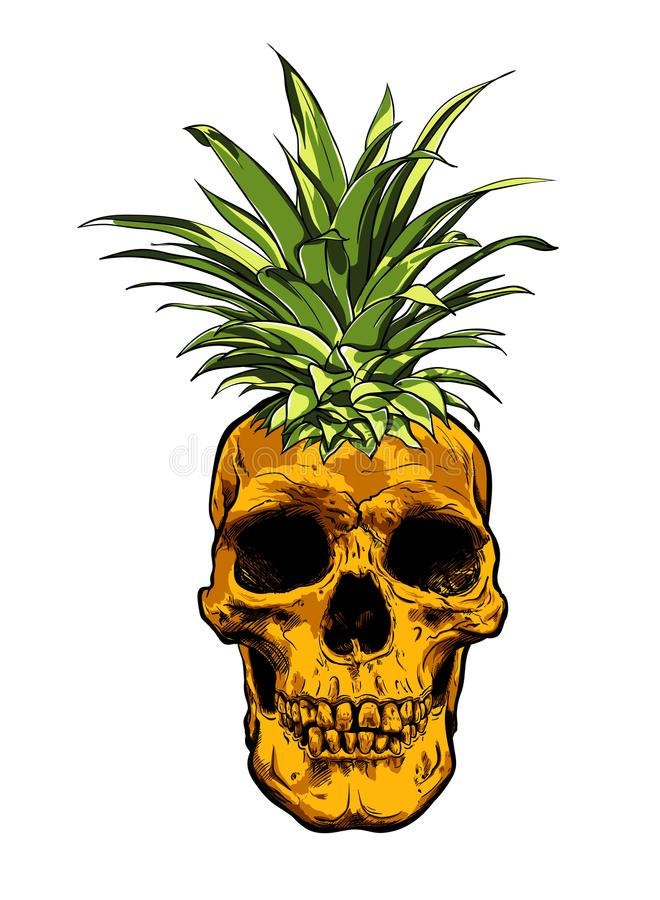 Vector dibujado mano del ejemplo de la piña de la fruta del cráneo ilustración del vector