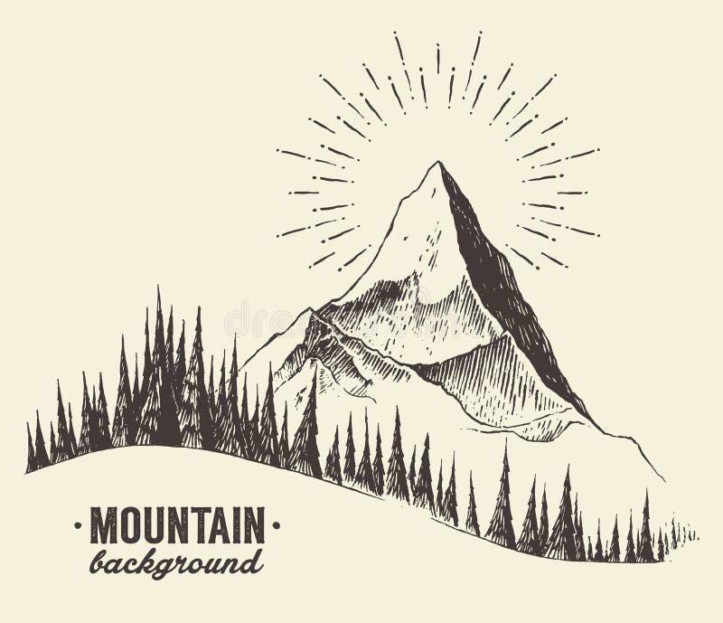 Vector dibujado puesta del sol del bosque del abeto de las montañas del bosquejo ilustración del vector