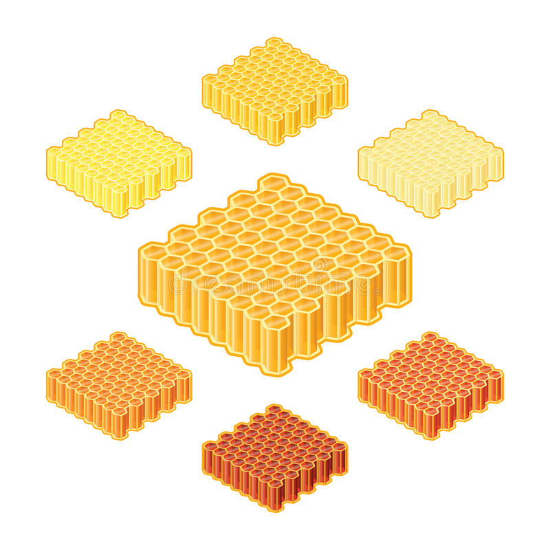 Vector different shades or sorts of honey into honeycombs in isometric style vector illustration