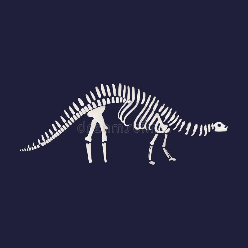 Vector diplodocus dinosaur fossil skeleton icon on. Vector diplodocus dinosaur fossil skeleton. Prehistoric herbivores, jurrasic giant animal icon. Paleontology stock illustration