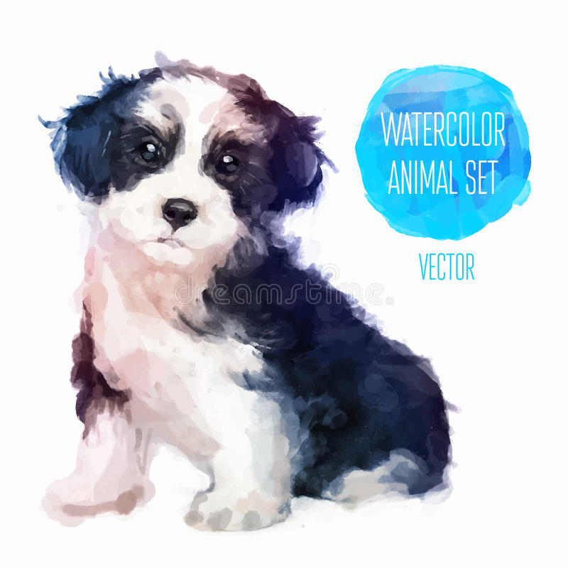 Vector dog hand painted watercolor illustration. Dog hand painted watercolor illustration isolated on white background
