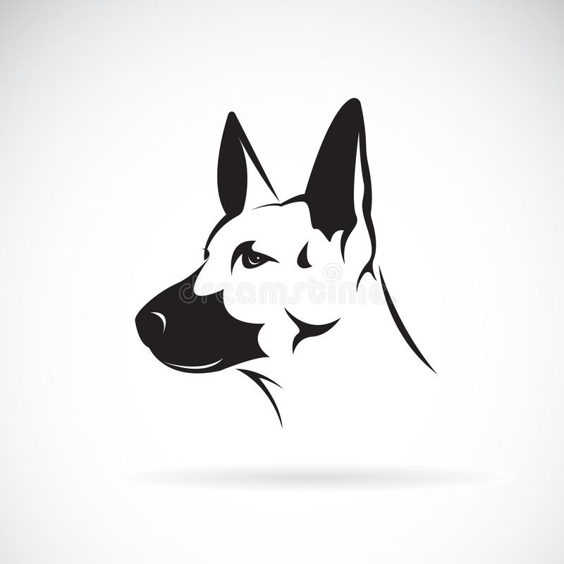 Vector of dog head German shepherd on white background, Pet. vector illustration