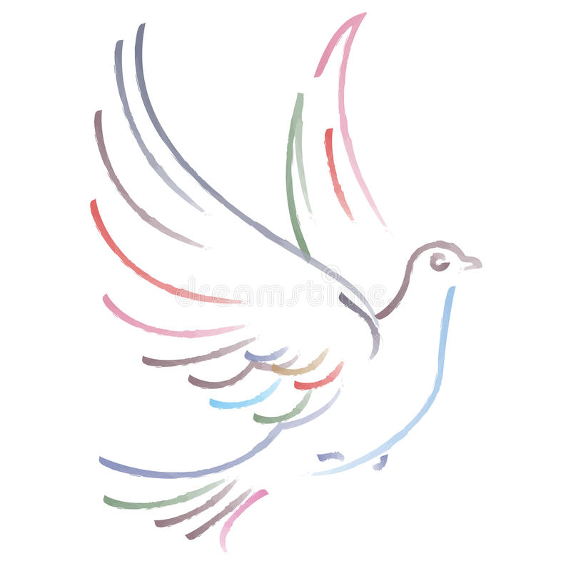 Vector dove. Vector illustration of flying dove on white background