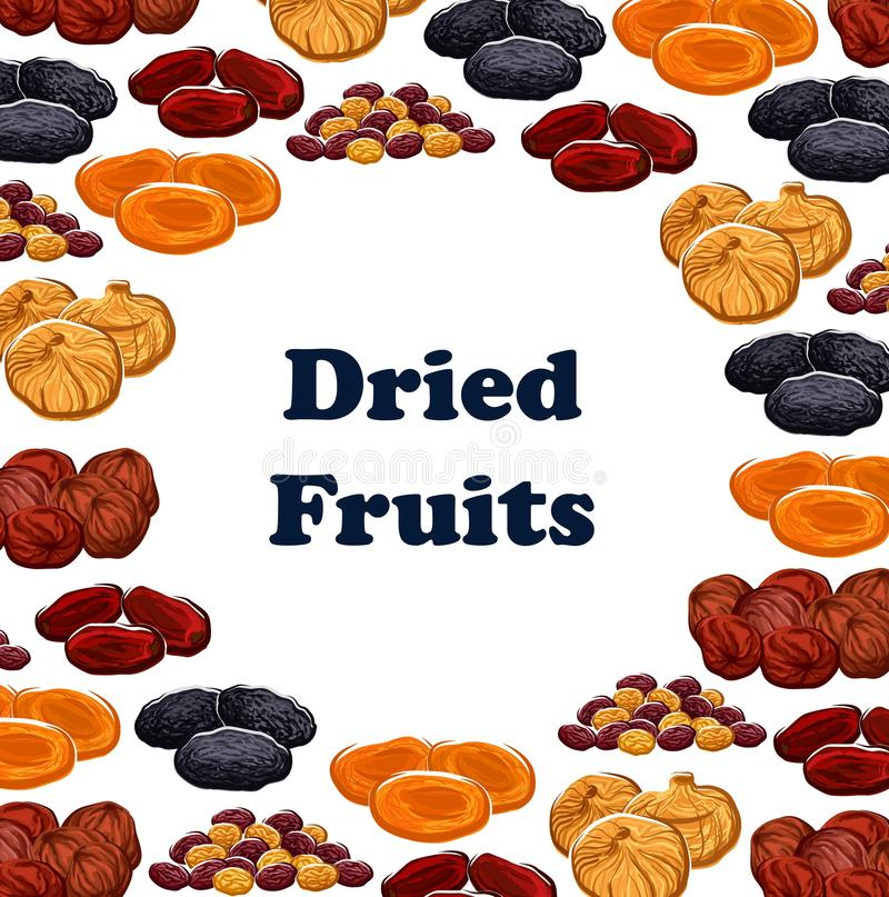 Vector dried and sweet fruits. Dried fruits frame of sweet food. Vector dates and raisins, apricots and prunes, figs and pineapple, cherries and apricots. Dry royalty free illustration