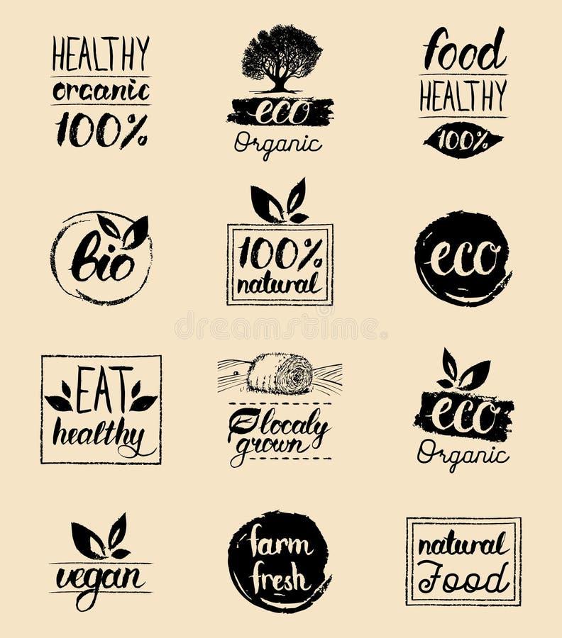 Vector eco, органические, био шаблоны карточек логотипа Рукописные здоровые едят установленные значки Vegan, естественная еда и з иллюстрация вектора