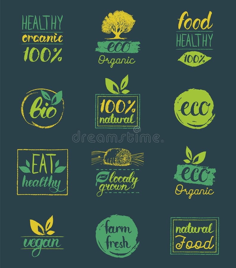 Vector eco,organic,bio logo cards templates. Handwritten healthy eat icons set. Vegan, natural food and drinks signs. stock illustration