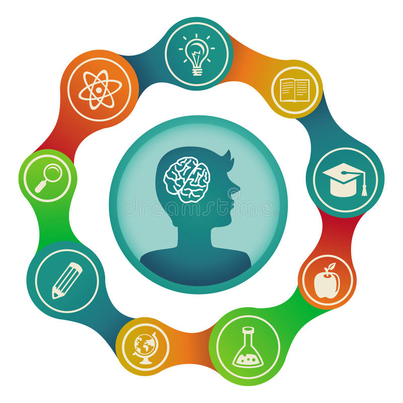 Vector education concept - brain and creativity stock illustration