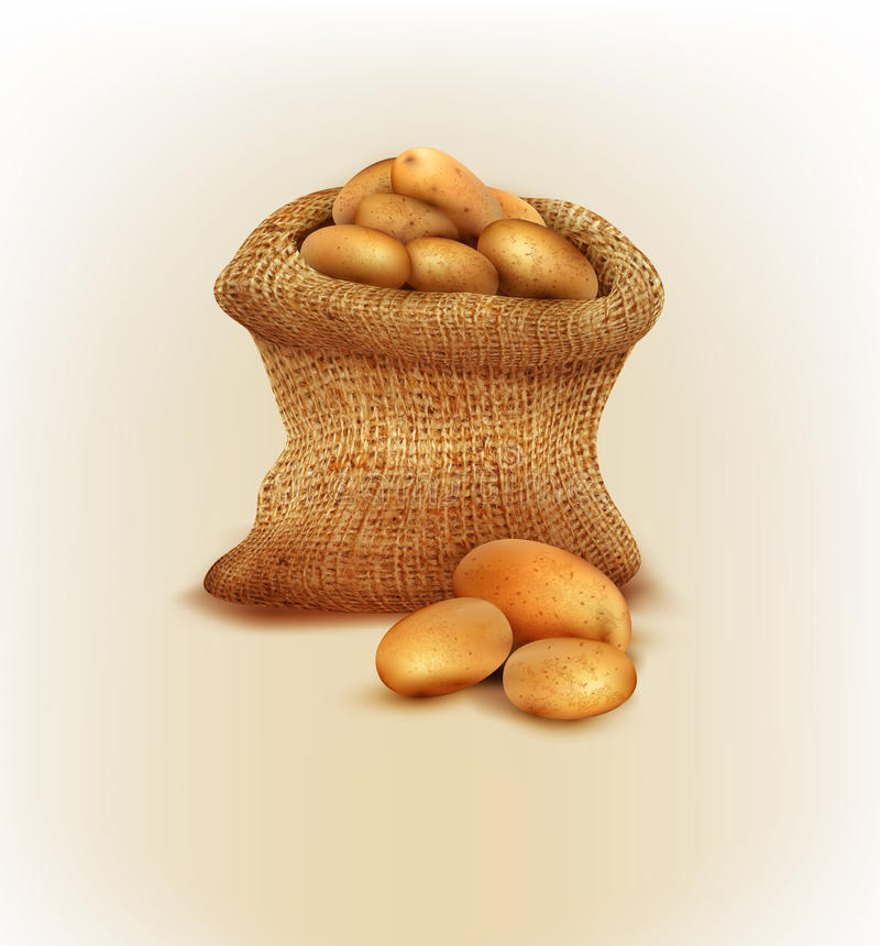 Vector een jutezak met aardappels stock illustratie