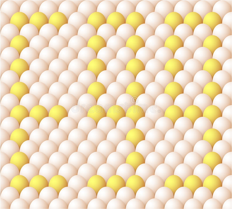 Vector Egg Background Stock Photography