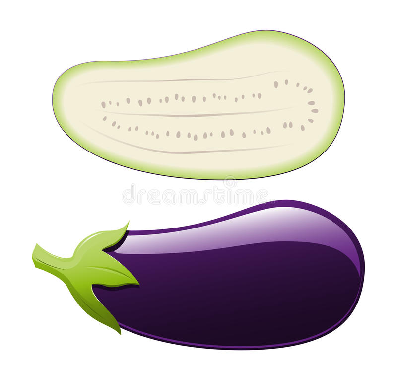 Free Vector Eggplant Royalty Free Stock Photography - 15463507