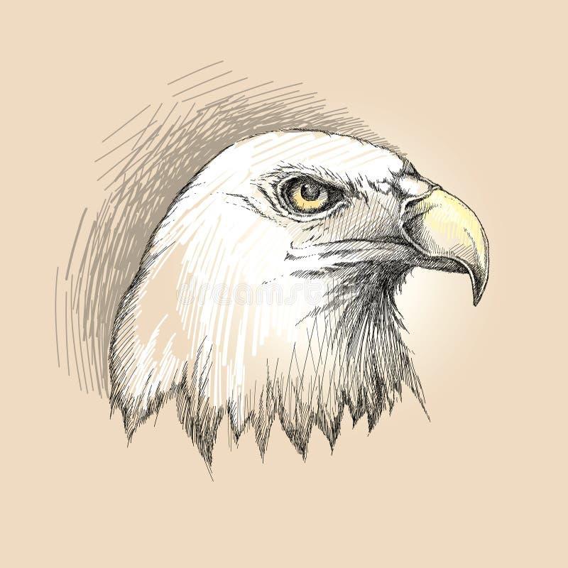 Vector el bosquejo del perfil de la cabeza del águila calva en negro en el fondo beige stock de ilustración