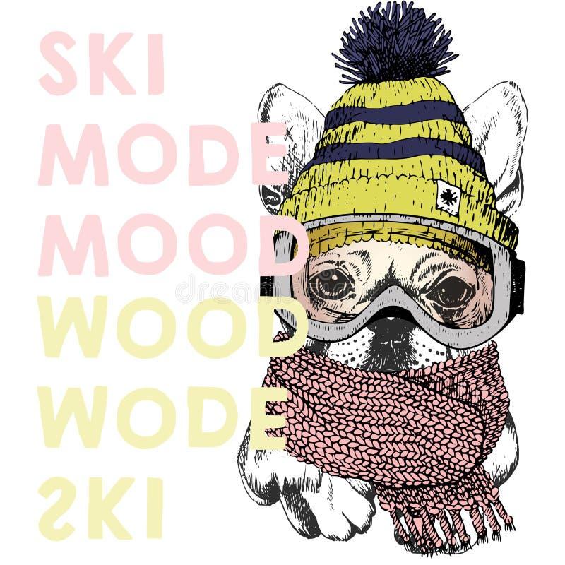 Vector el cartel con cierre encima del retrato del perro del beagle Humor del modo del esquí Gorrita tejida del perrito, bufanda  ilustración del vector